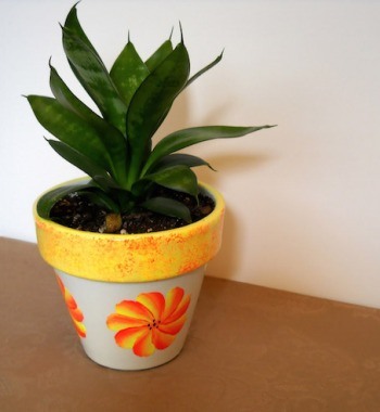 potted-plant