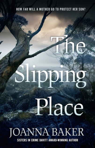 Slipping Place_cover final copy